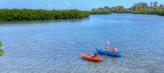 programme éducatif WiseOceans Four Seasons Mauritius
